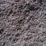 Fish Compost
